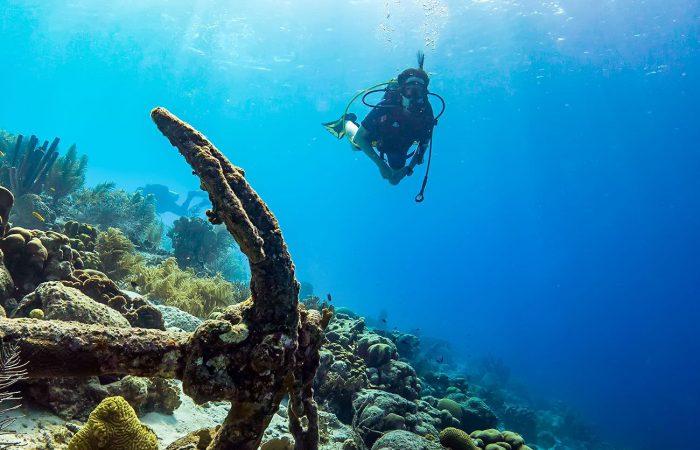 Aqua Ventura PADI Rescue Diver & EFR Course