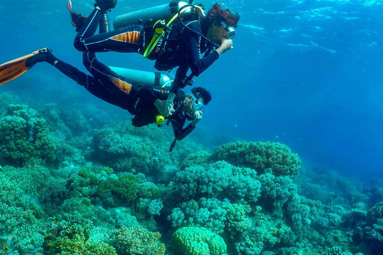 Aqua Ventura Diving PADI DISCOVER SCUBA DIVING (DSD)-SEA