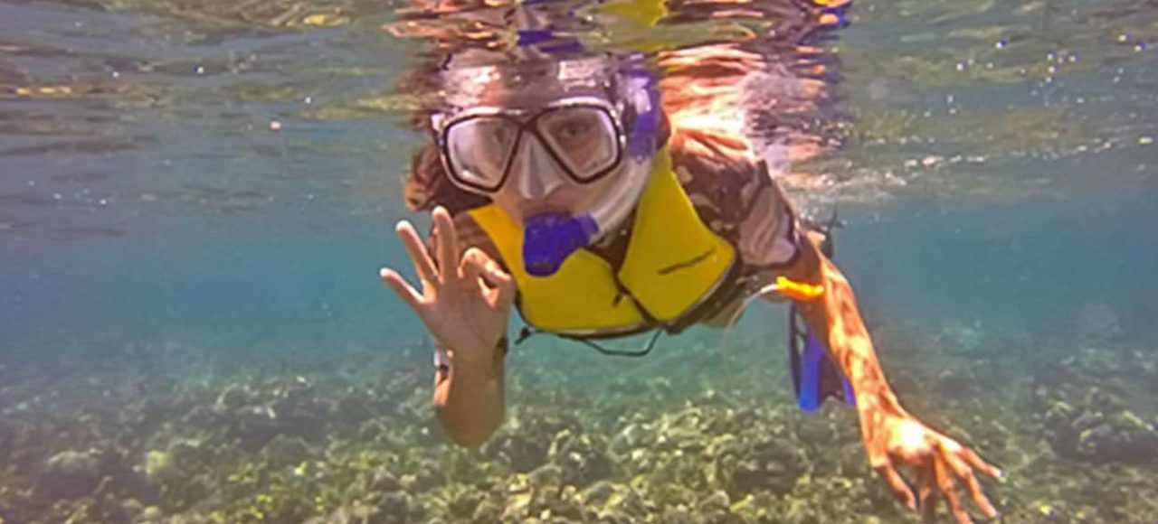 Apo Island Snorkeling Day Tour