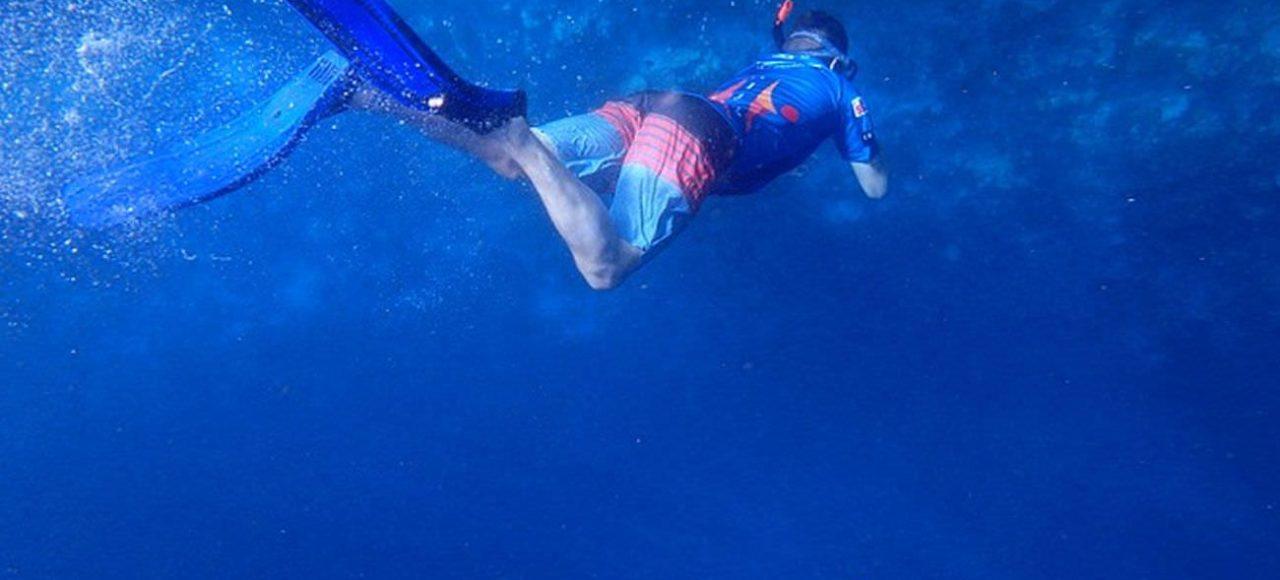 Aqua Ventura Diving Snorkeling